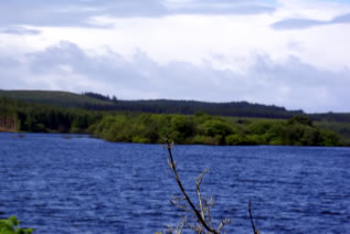 Saints Island on Lough Derg, showing the stones of Corra to the north of the island (left of the picture)