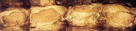 Bison paintings from Cave Font-de-Gaume, Dordogne