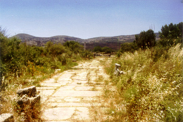 Remains of the Sacred Way leading to the Iraion