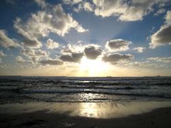 Beach photo by Serene Conneeley