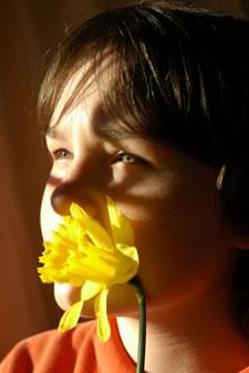 girl with daffodil