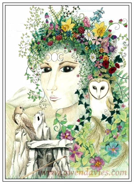 Blodeuwedd, by Gwen Davies